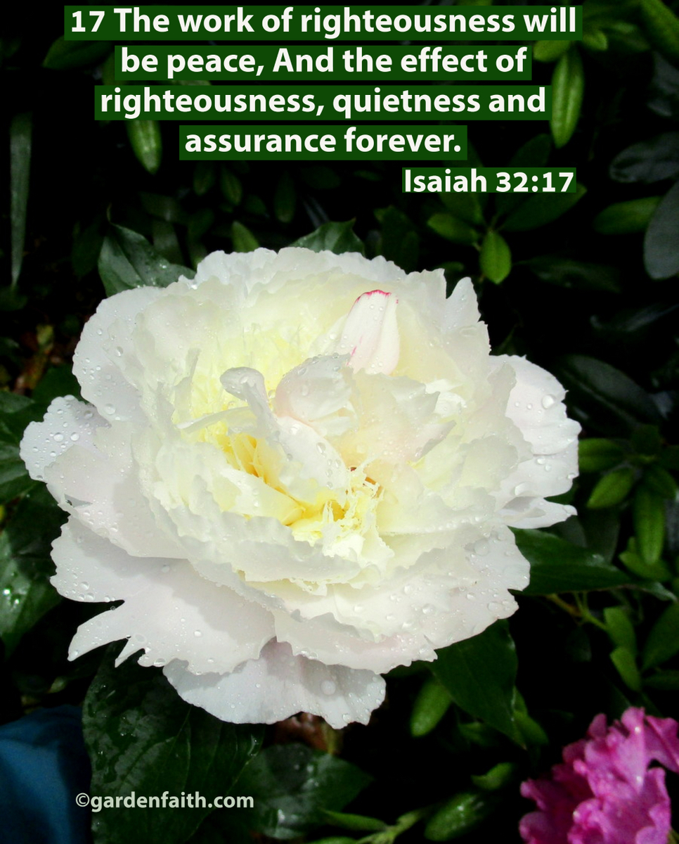 Peace and Assurance: Isaiah 32:17 – Garden Faith